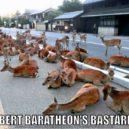 Los bastardos de Robert Baratheon